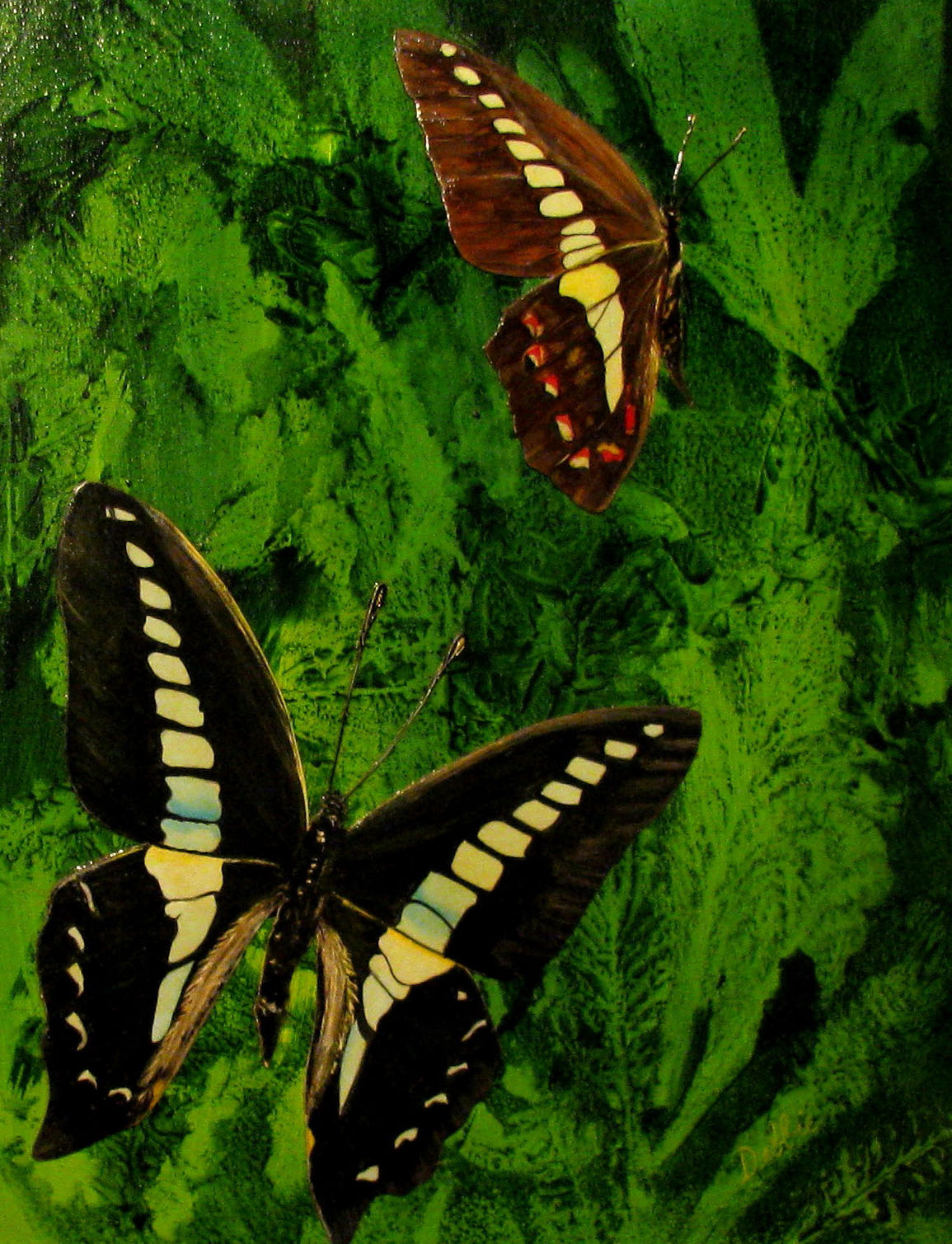 Realistic butterfly paintings - photo#6