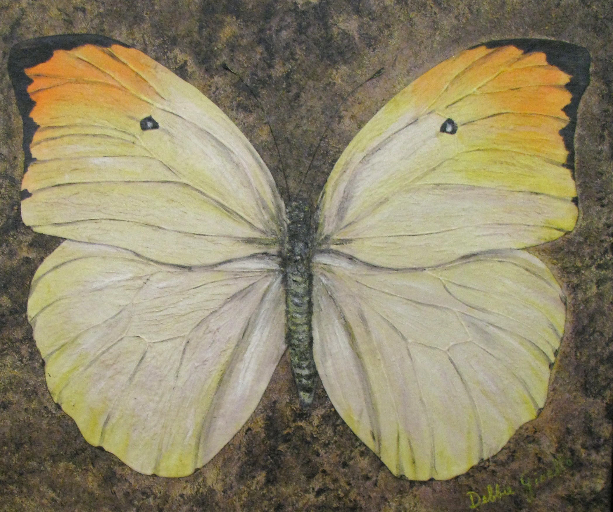 Realistic butterfly paintings - photo#48