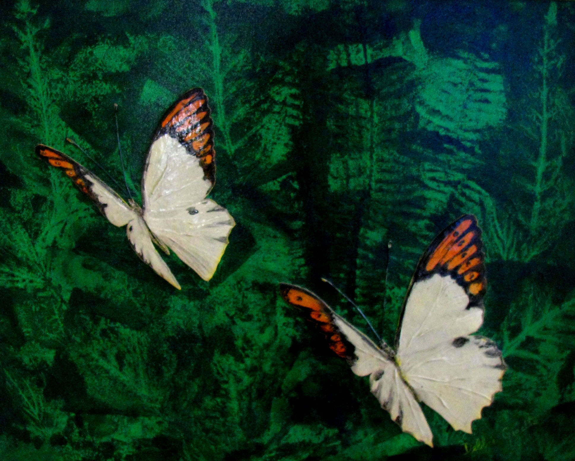 Realistic butterfly paintings - photo#5