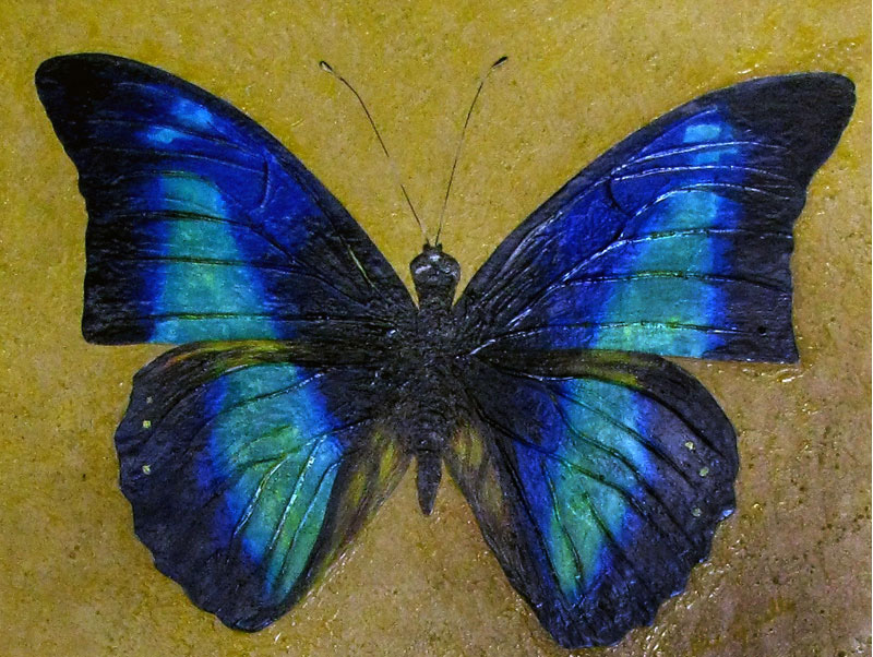Realistic butterfly paintings - photo#29