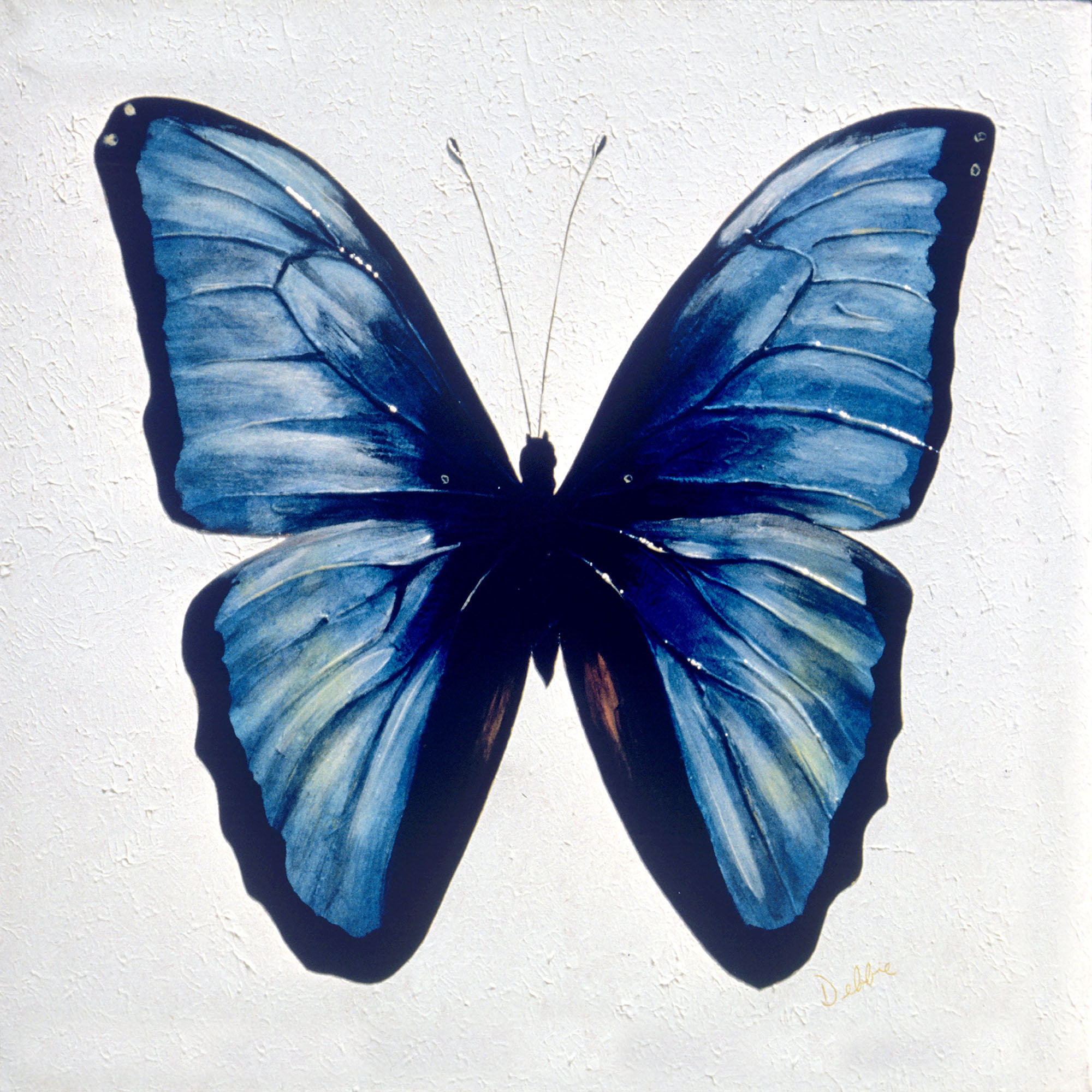 Realistic butterfly paintings - photo#8