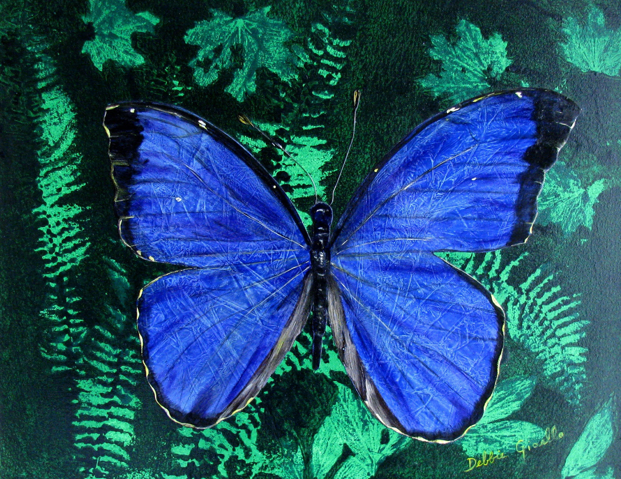 Realistic butterfly paintings - photo#35