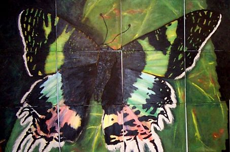 Madagascar Butterfly - 12 panel painting