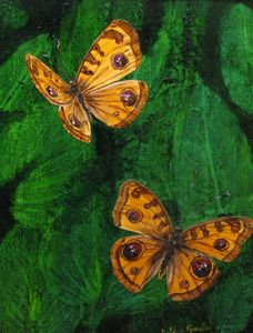 "Peces Butterfly (16"" x 20"")"